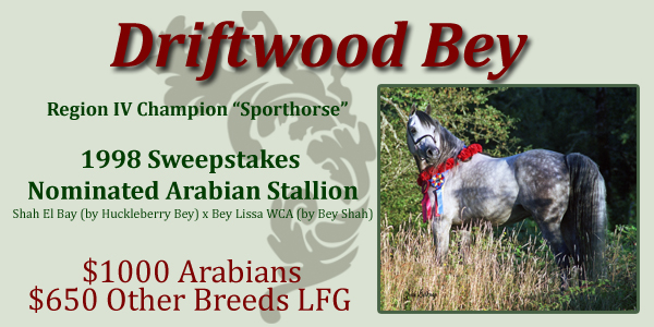 Sweepstakes Nominated Sire Driftwood Bey